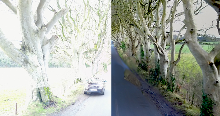 b-a_dark_hedges