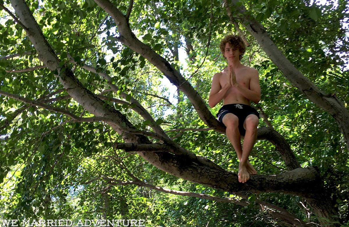 b_tree