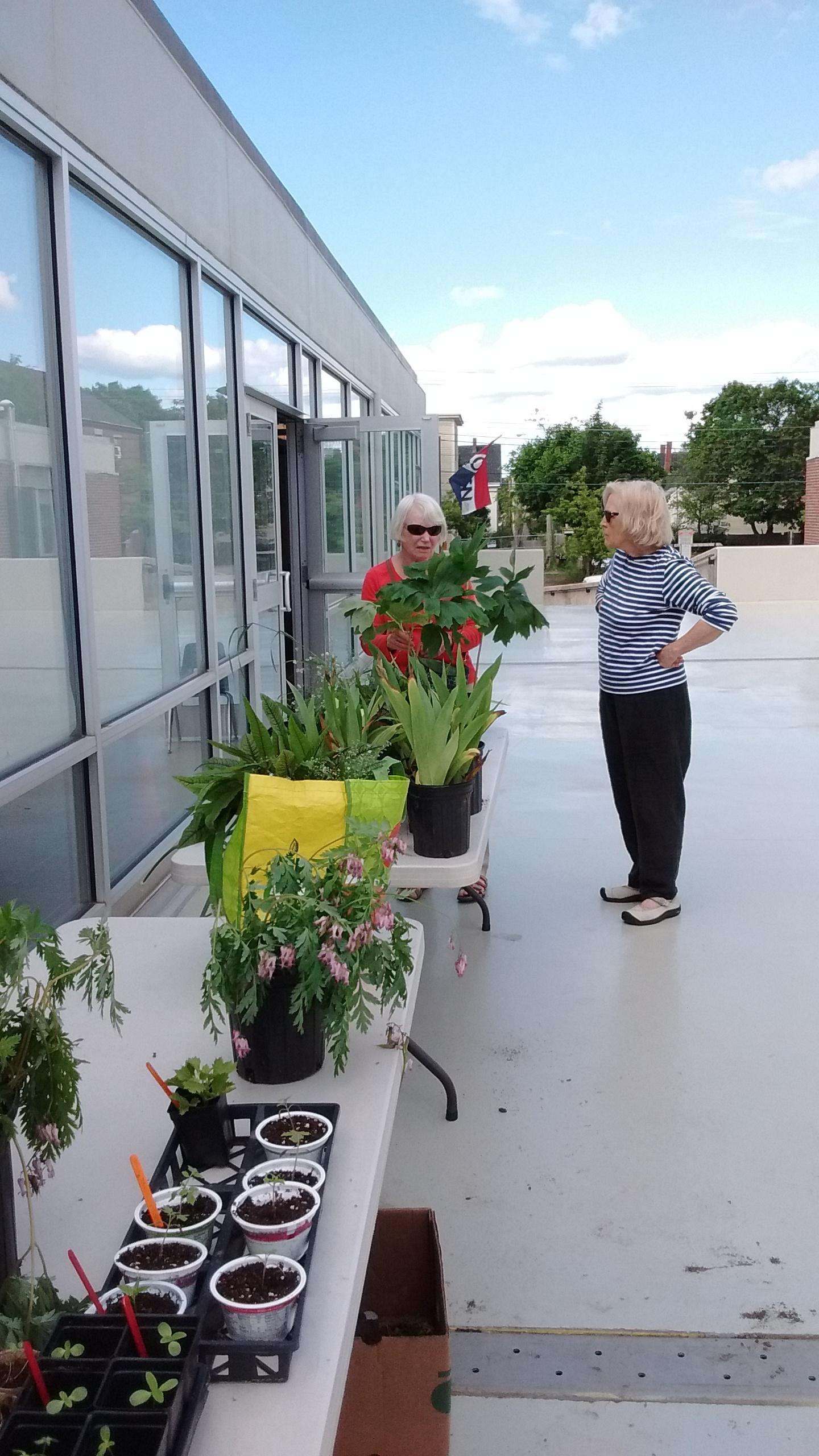 Neighborhood Plant Swap