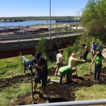 Harbor View Park  Project – SPRING  WORK DAY