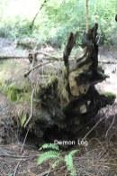 sm-demon-log-IMG_0049