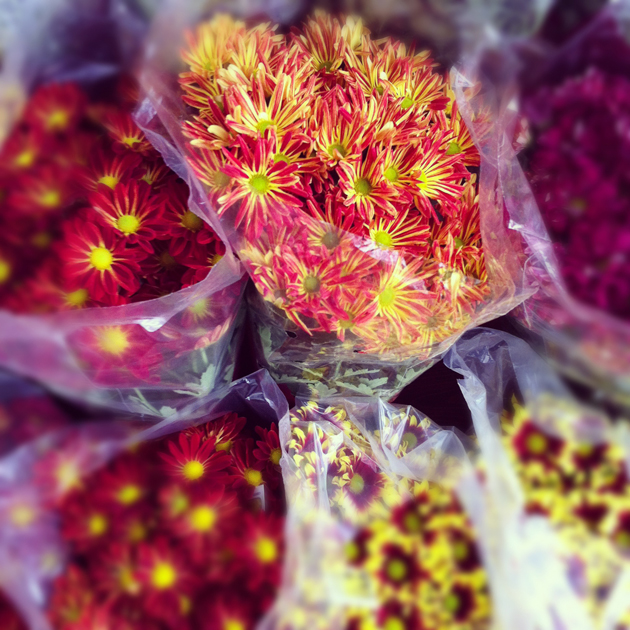 different-lovely-mums