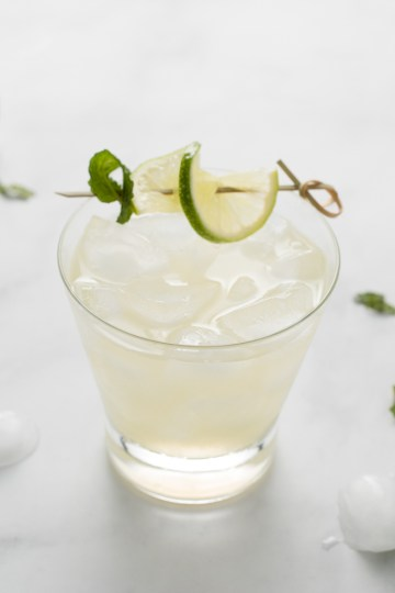 Wider view of No-jito (AIP/Paleo) in a short cocktail glass with ice, garnished with lime and mint on a bamboo skewer. There is melting ice and lime pieces nearby.
