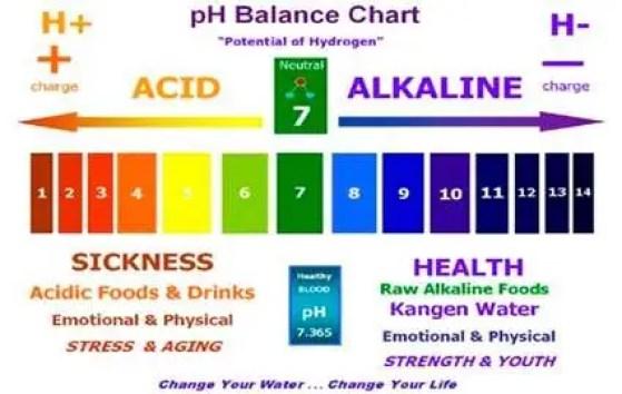PH-Chart-kangenWater