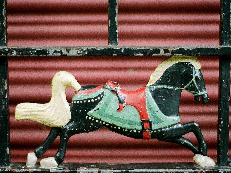 ferris wheel miniature horse