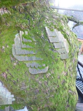 AB Tree 4