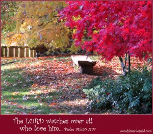 Blessed are those who have learned to acclaim you, who walk in the light of your presence, O LORD. Psalm 89:15 NIV wendy l macdonald