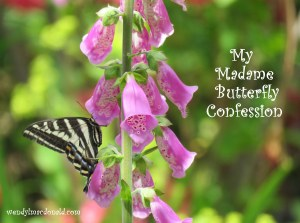 My Madame Butterfly Confession wendylmacdonald.com