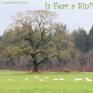 Is Fear a Sin? wendylmacdonald.com