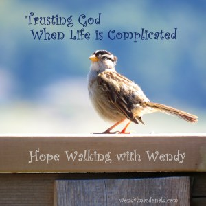 Trusting God When Life is Complicated wendylmacdonald.com #podcast #faith