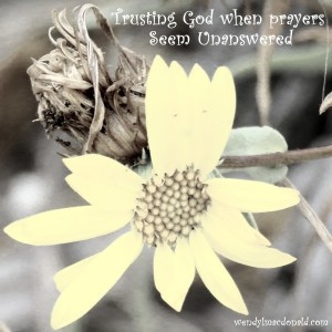 Trusting God when #prayers Seem Unanswered wendylmacdonald.com