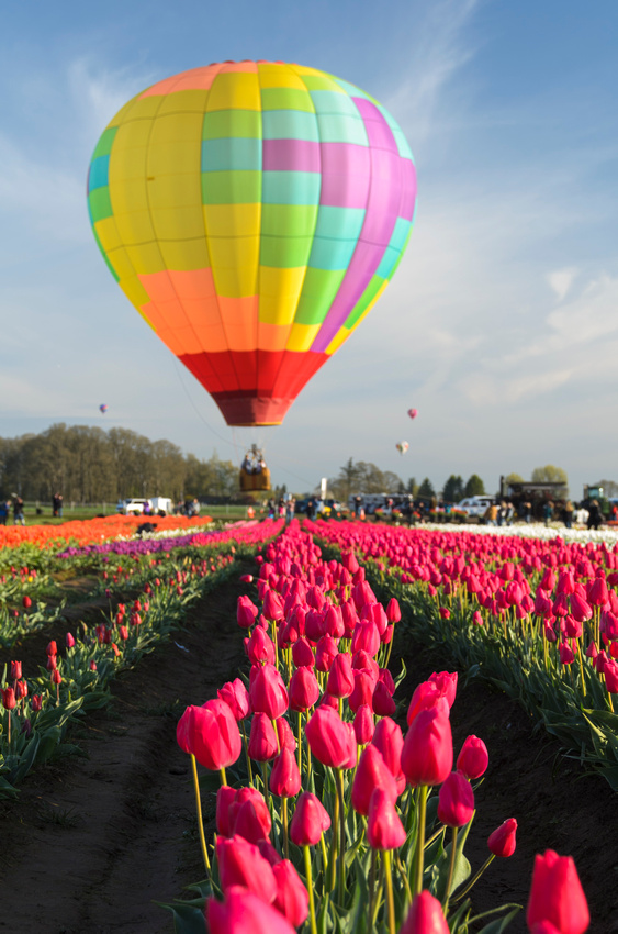 Wendy Ng Photography: Oregon &emdash; Hot Air Morning