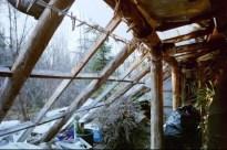 greenhousenaked