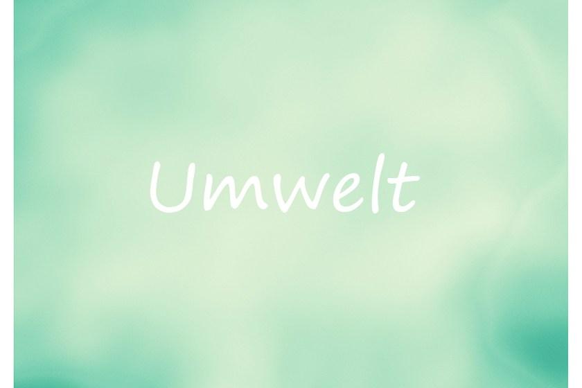 1-umwelt