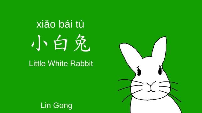 Little White Rabbit Book Cover