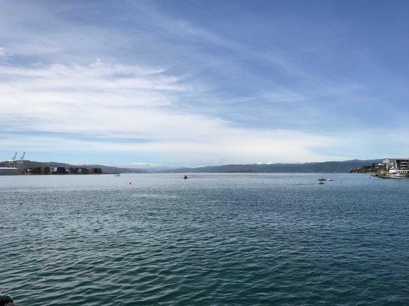 Neuseeland, Ausblick vom Hafen