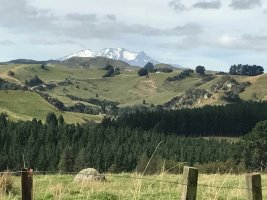 Blick auf den höchsten Berggipfel der Nordinsel