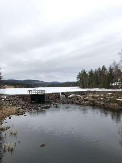 Norwegen-Oslo34