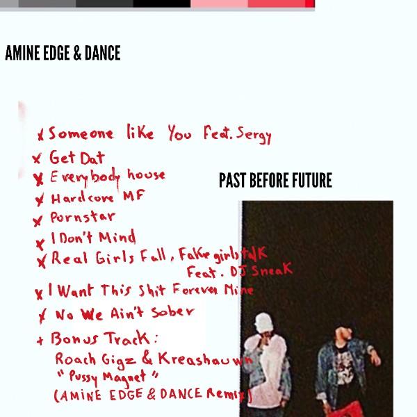 We Own The Nite NYC_Amine Edge_&_Dance_Past Before Future