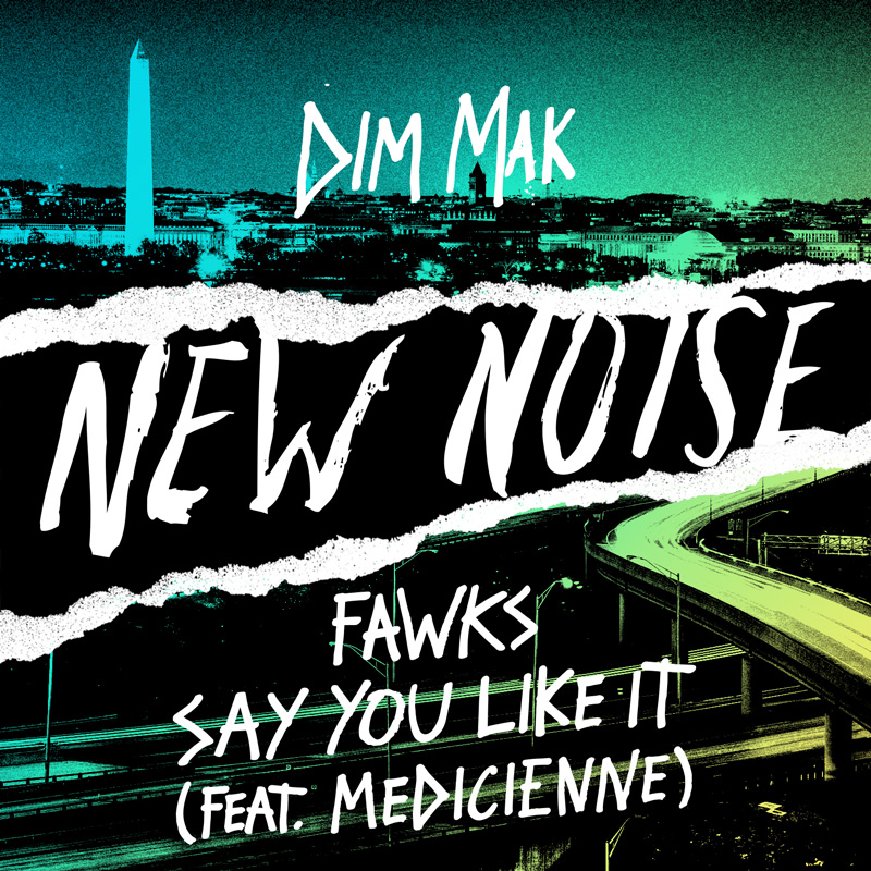 we-own-the-nite-nyc_fawks_say-you-like-it_feat-medicienne_new-noise_dim-mak