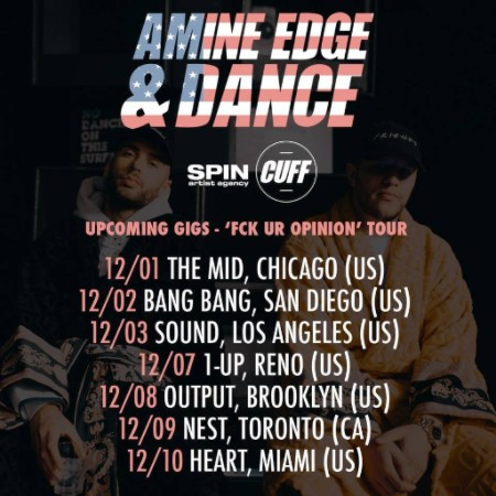 we-own-the-nite-nyc_amine-edge-dance_tour