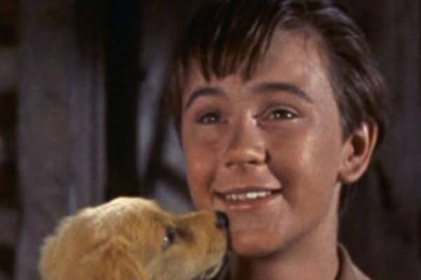 Tommy Kirk Net Worth At The Time Of His Death