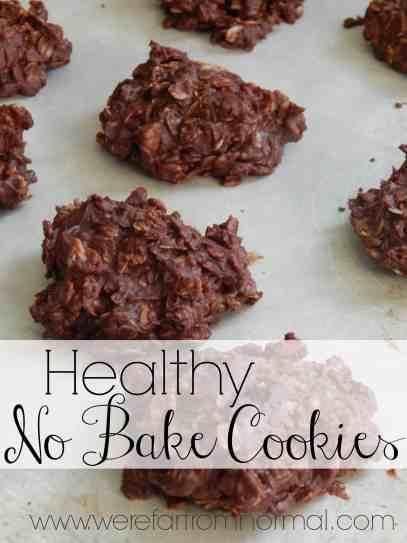 Healthy No-Bake Cookies, refined sugar free