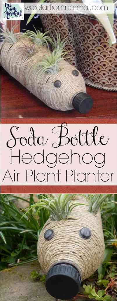 This super cute little planter is made from a soda bottle! It's a great whimsical way to display low maintainace little air plants in your house!