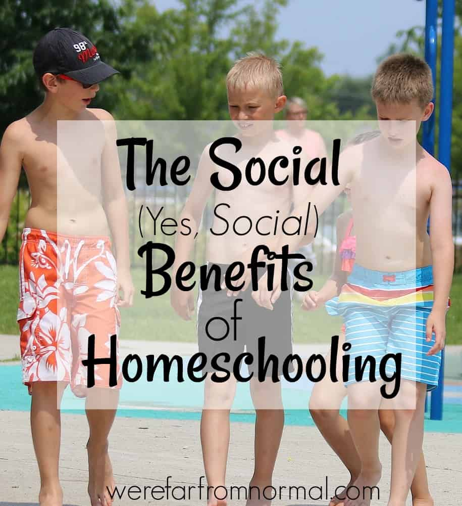 the socialization of a homeschooler Robert kunzman and milton gaither 5 of the school-age population, was homeschooling this was a 36 percent increase from the same organization's 2003 estimates (planty et al, 2009.