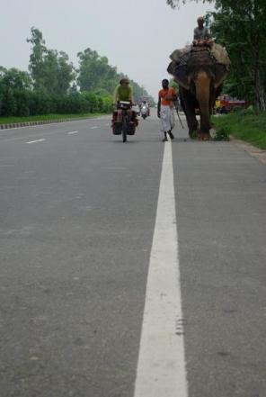 india336