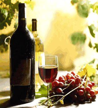 9th Annual Grape Escape Wine Benefit