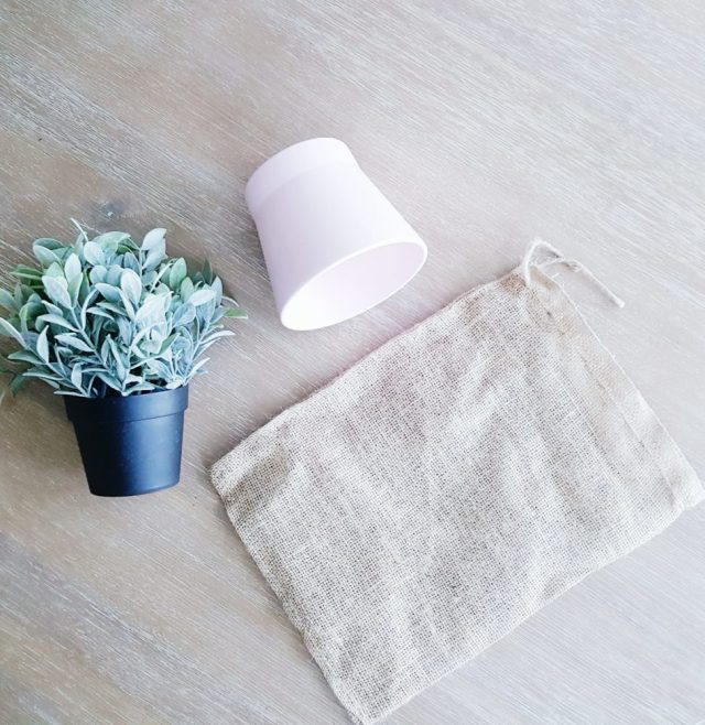 Plant Wrapped in Burlap Bag
