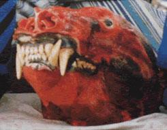 Diane Werewolf Head
