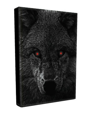 A Pack Of Wolves Trilogy