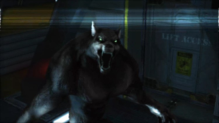 "Start a Very Fast Werewolf Riot with ""Infinity Runner – Unleash the Beast"" featured image"