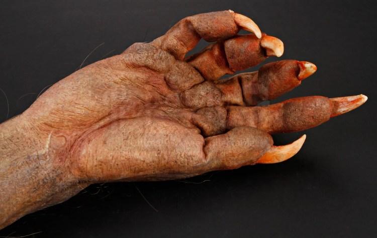 Three fashionably hairy werewolf film & TV prop limbs featured image