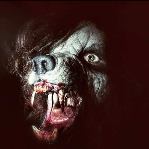 """""""Hair of the Dog"""" full werewolf makeup preview featured image"""