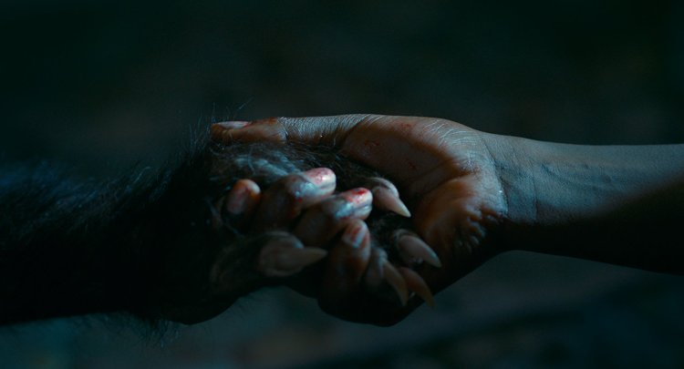 """Lycanthropy, motherhood collide in gothic Brazilian horror drama """"Good Manners"""" (As Boas Maneiras) featured image"""