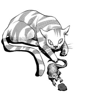 Érase un Gato y un Ratón...