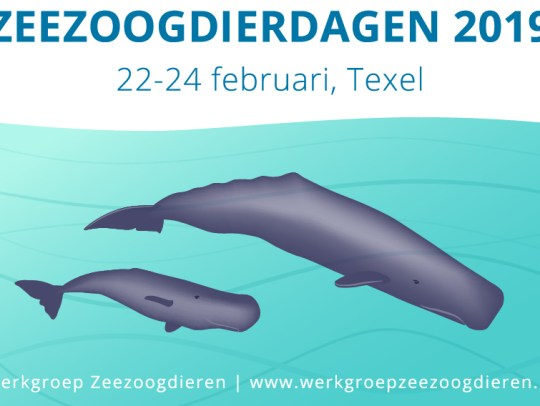 Zeezoogdierdagen 2019