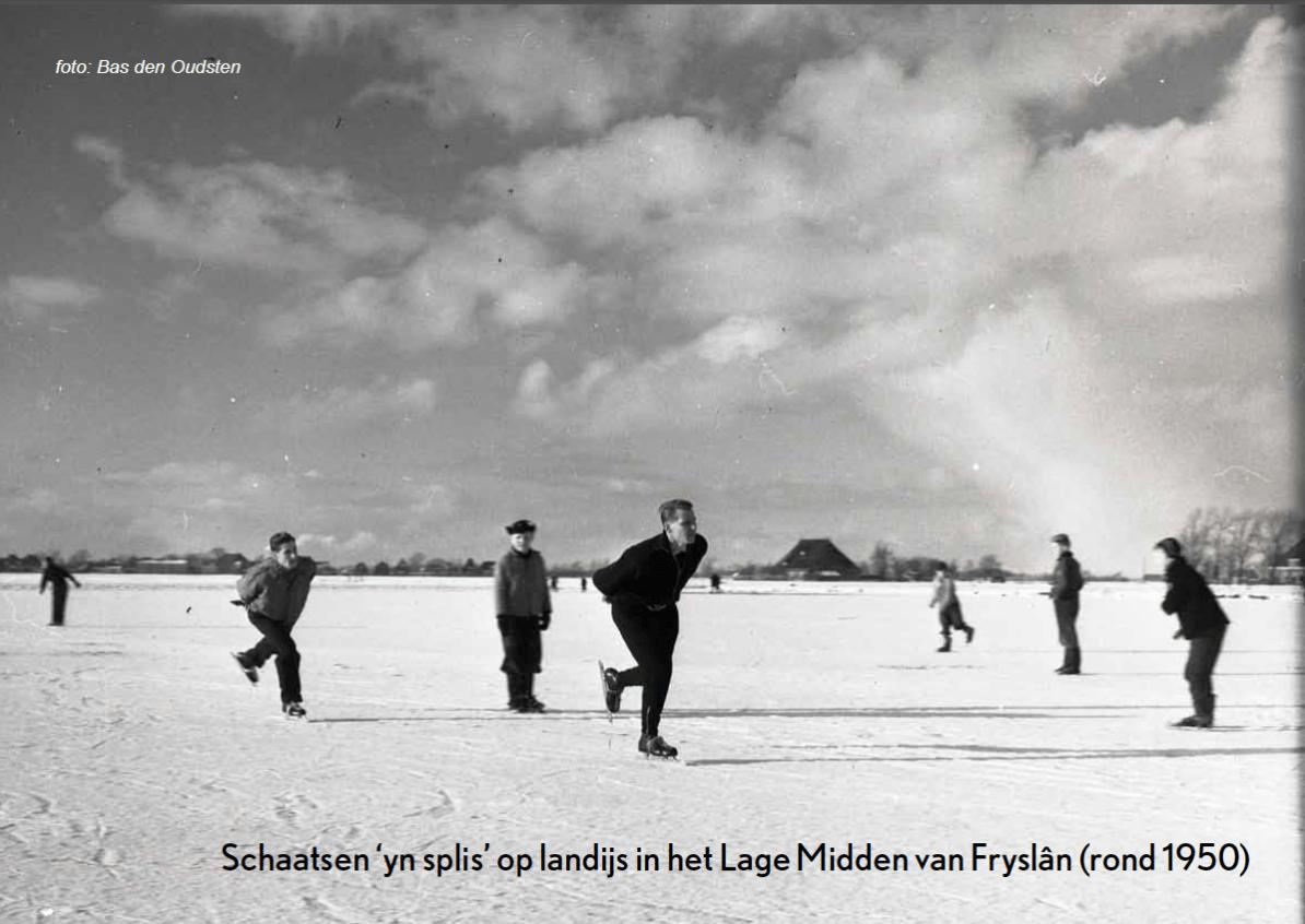 Veenweidegebied Fryslan in de winter. beeld: Peter de Ruyter