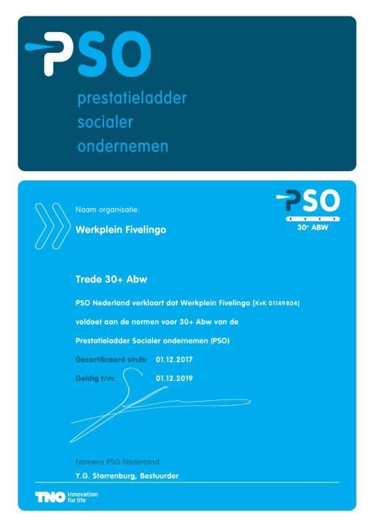 Werkplein-Fivelingo-PSO-Certificaat-Trede-30+