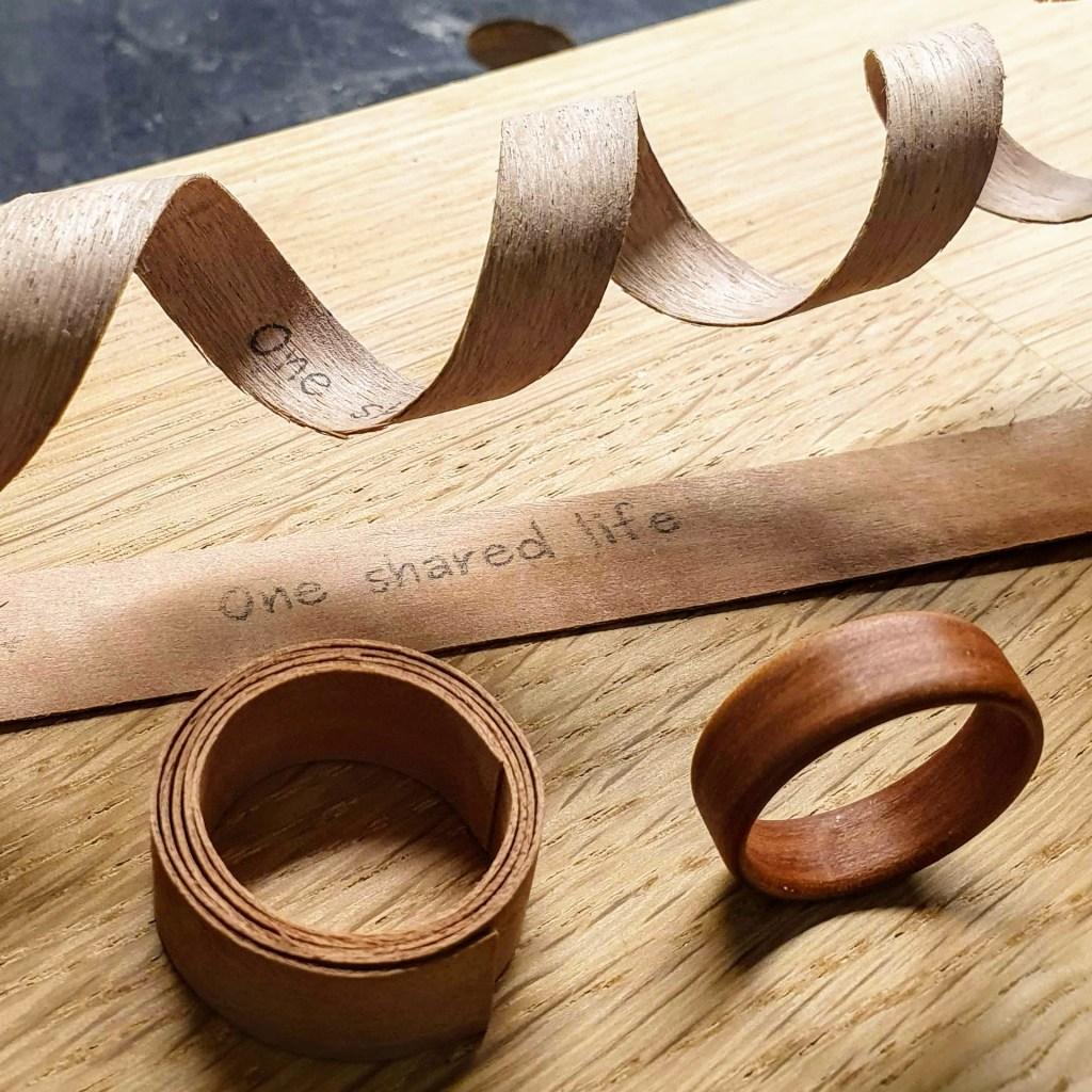 Entstehung eines Holzrings