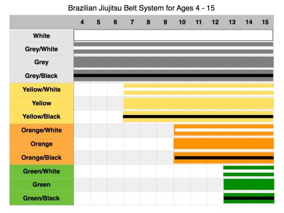 BJJ belts 4-15