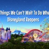 10 Things We Can't Wait To Do When Disneyland Reopens 6