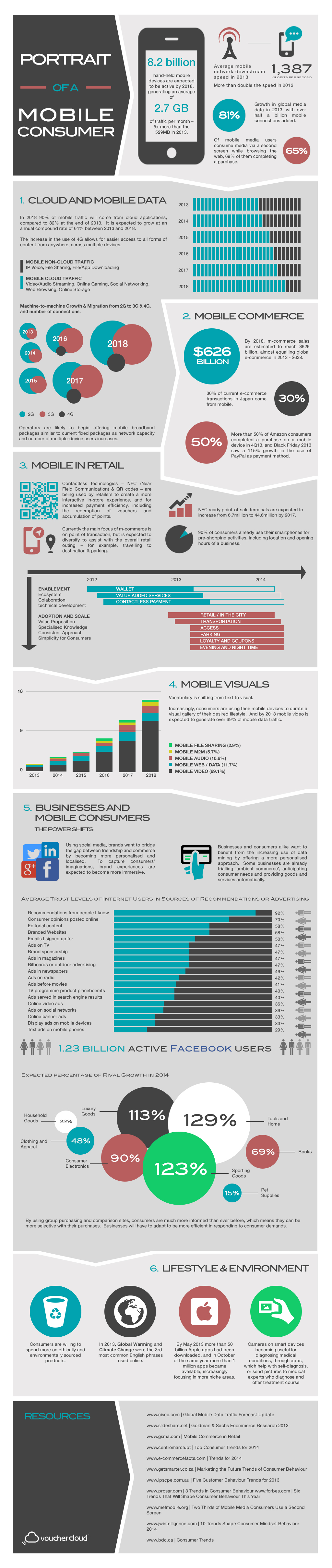 wersm-portrait of a mobile consumer infographic