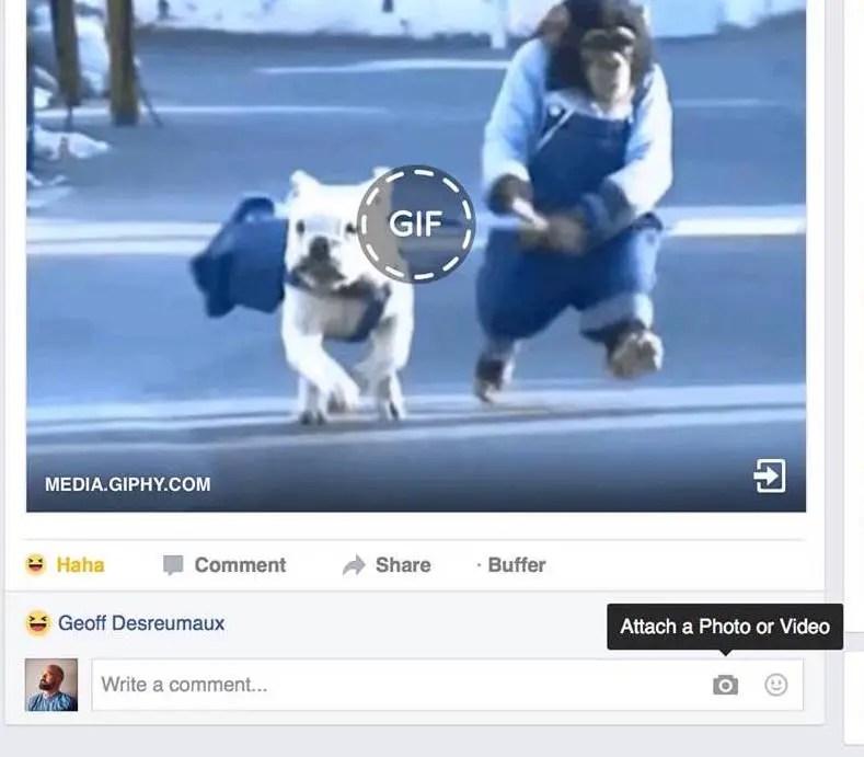 wersm photo comment video