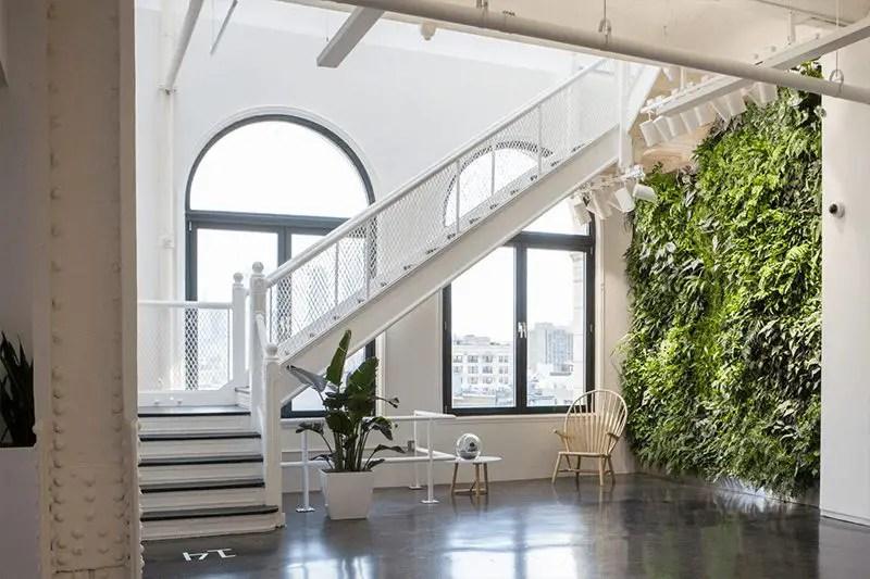wersm-instagram-NYC-office-living-green-wall
