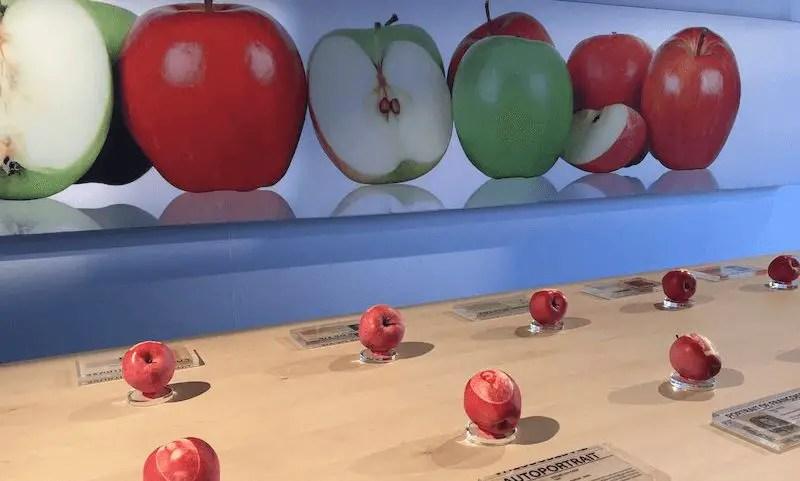wersm-apple-store-laquenexy-1