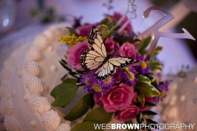 0167_4597_20110730_Kernstock_Wedding